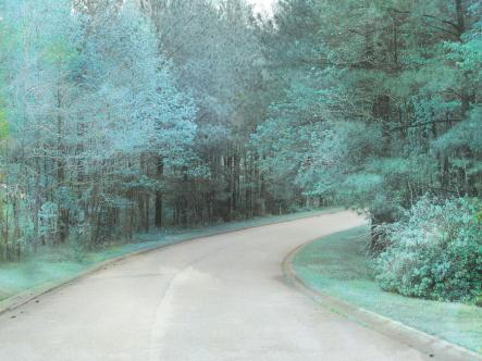 dreamy-teal-aqua-blue-nature-trees-kathy-fornal